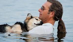 Köpek İnsanın Dostudur